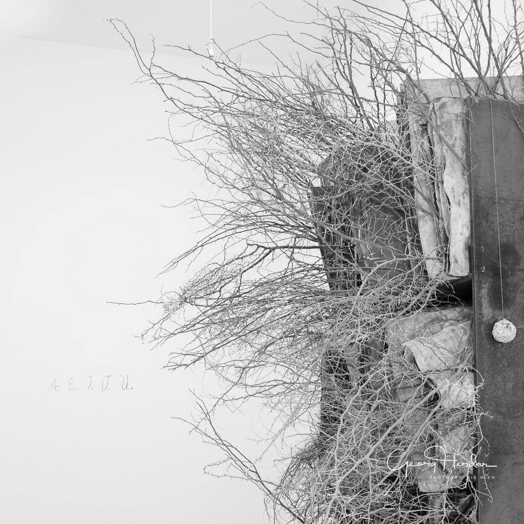 Anselm Kiefer - Art Project