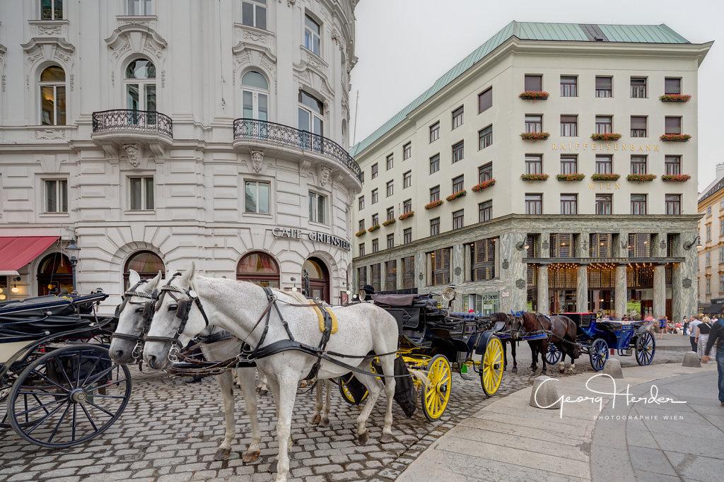 Ansicht vom Michaelerplatz