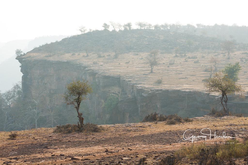 Kaila Devi national park